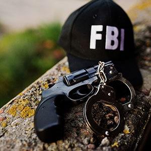 federal criminal
